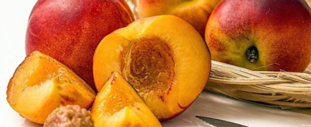 Pálenice na Hornej Nitre už cítia nedostatok ovocia
