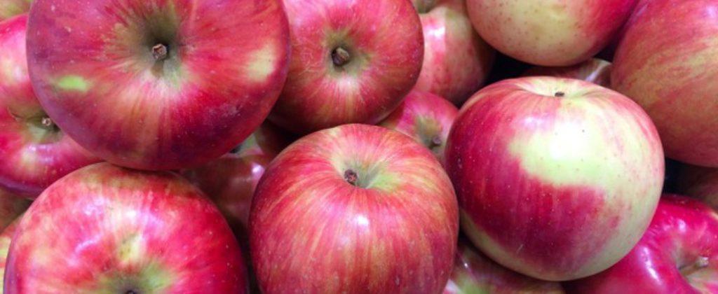 Jablká kúpim, hľadám