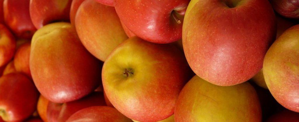 Predám skoré jablká