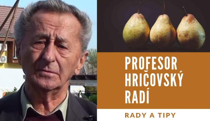 Profesor Hričovský radí